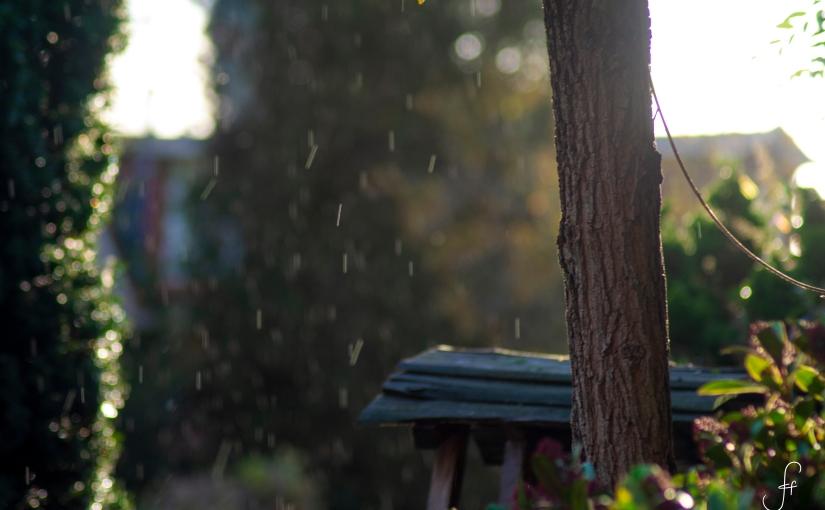 Rain in thesun